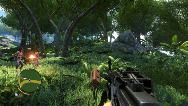 Far Cry 3 Jungle