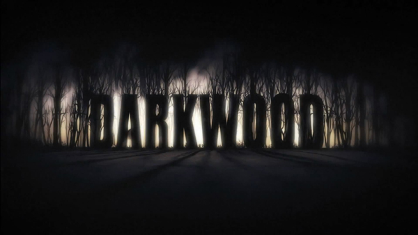 Darkwood Brings Horror So Bring Extra Underwear: An Interview with Acid Wizard Studio