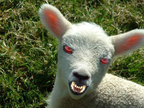 The Lamb Shall Demonstrate Its Wrath on The Binding of Isaac on the 28th of May