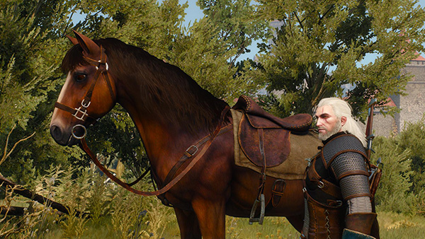 Played The Witcher 3: Wild Hunt – Wild What?